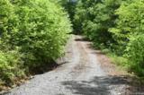 Lot 2 Pickens Highway - Photo 4