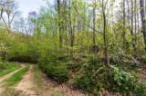 Lot 64 Big Springs Trail - Photo 10