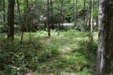 Lot 1 Pickens Highway - Photo 11