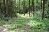 Lot 1 Pickens Highway - Photo 6
