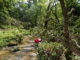 118 Powder Creek Trail - Photo 11