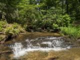 118 Powder Creek Trail - Photo 9