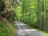 12B Gladiola Drive - Photo 1