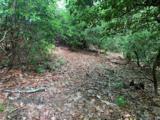 12B Gladiola Drive - Photo 3