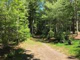 45 Jake Ridge Trail - Photo 11