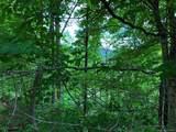 307 Porters Ridge - Photo 3