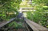 Lot 4 Pine Moss Lane - Photo 11