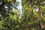 Lot 4 Pine Moss Lane - Photo 16