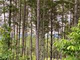Lot 59 Gray Ridge View Drive - Photo 19