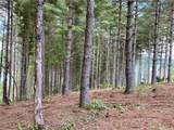 Lot 59 Gray Ridge View Drive - Photo 21