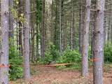Lot 59 Gray Ridge View Drive - Photo 22