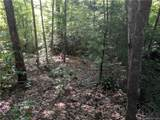 56 Old Greybeard Loop - Photo 6