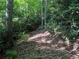 56 Old Greybeard Loop - Photo 8