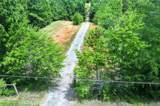 26.25 Acres Wilson Chapel Road - Photo 5
