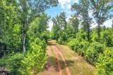 26.25 Acres Wilson Chapel Road - Photo 7