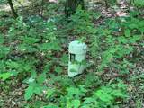 0000 Fawns Rest - Photo 2