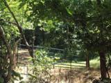TBD Sallys Branch Road - Photo 22