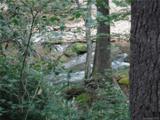 Lot 19 Ostin Creek Trail - Photo 10