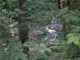 Lot 19 Ostin Creek Trail - Photo 9