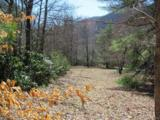 00 Bull Creek Road - Photo 1