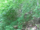 99999 Wedgewood Terrace - Photo 4