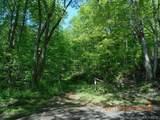 TBD Sweet Creek Road - Photo 1