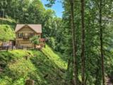 126 Logging Trail - Photo 5