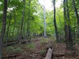 19.97 Acres Scout Camp Road - Photo 37