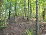 19.97 Acres Scout Camp Road - Photo 45