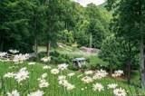 697 Crystal Tree Drive - Photo 28