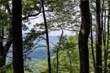 Lot# 250 Autumn Ridge - Photo 3