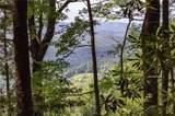 Lot# 250 Autumn Ridge - Photo 5