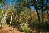 126 Powder Creek Trail - Photo 1