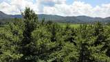 Lot 89 Mountain Brook Trail - Photo 8