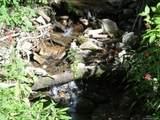 110 & 116 Tenderfoot Trail - Photo 3