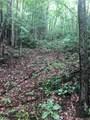 50 Glass Falls Trail - Photo 4
