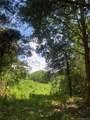 3895 Appaloosa Ridge - Photo 5