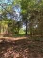 3895 Appaloosa Ridge - Photo 6