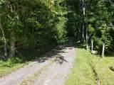 000 Haney Creek Road - Photo 3
