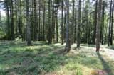L 66 Stone Field Trail Road - Photo 3