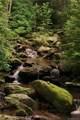 2 Oak Ridge Trail - Photo 15