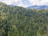 0 Cattail Creek Creek - Photo 5