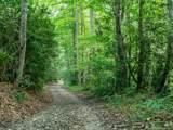 0 Cattail Creek Creek - Photo 6