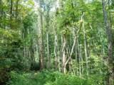 0 Cattail Creek Creek - Photo 9