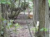 0 Hickory Springs Road - Photo 1