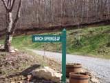345 Birch Springs Lane - Photo 6