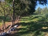 214 Grand Oaks Drive - Photo 5