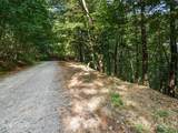 Lot 23 Miller Mountain Road - Photo 2