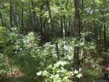 Lot 13 Fox Ridge Trail - Photo 11