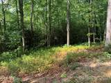 Lot 132 Green Hollow Lane - Photo 10